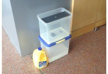 молоко1