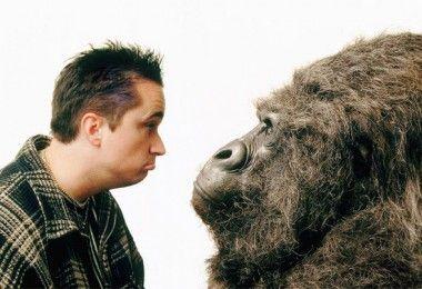 психология примат человек обезьяна
