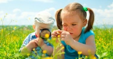 зеленый урок дети лупа