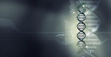 наука генетика ген днк