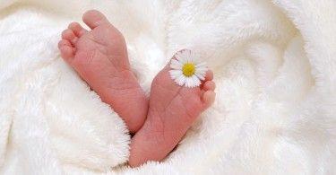 младенец ребёнок дети семья ноги