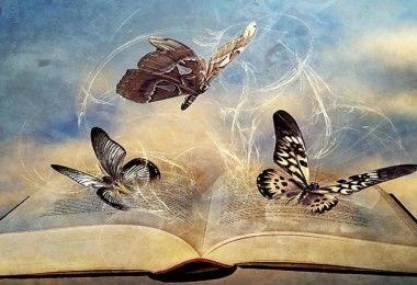 книга бабочки разум мотылёк филология