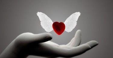 любовь рука отношения мотылёк