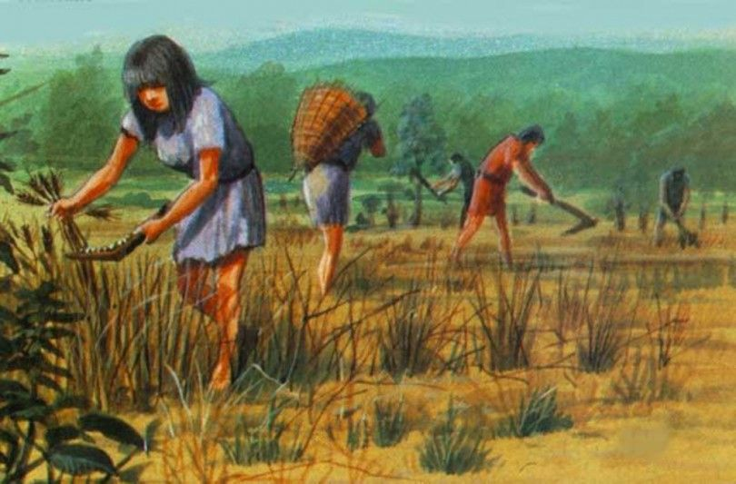 древнее земледелие история